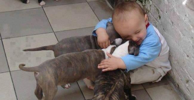 21 fotos que provam que crianças precisam de animais de ...