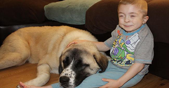 Ele tem uma doença rara e seu cão apenas 3 patas. Agora veja ...