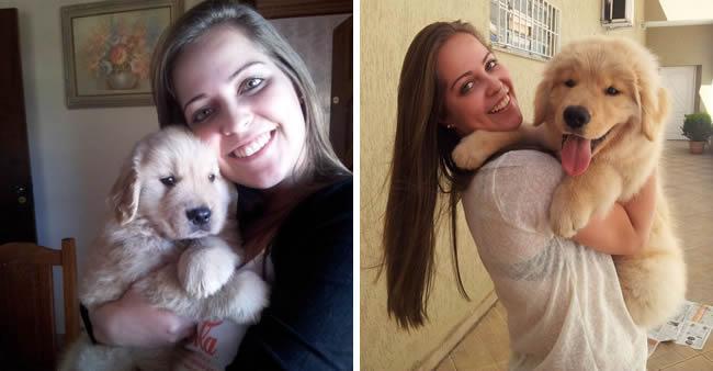 27 fotos 'antes e depois' sensacionais dos leitores e seus animais ...