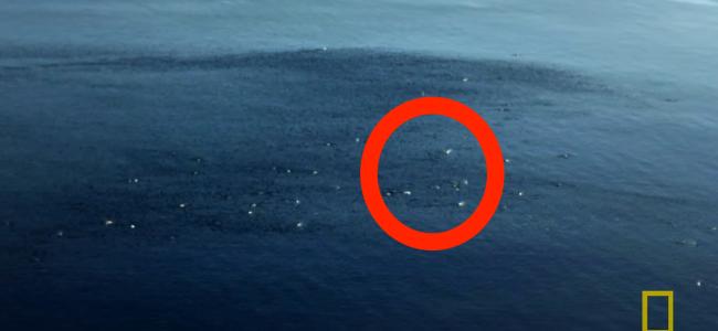 Vê aqueles pontinhos no meio do oceano? Faz parte de um evento ...