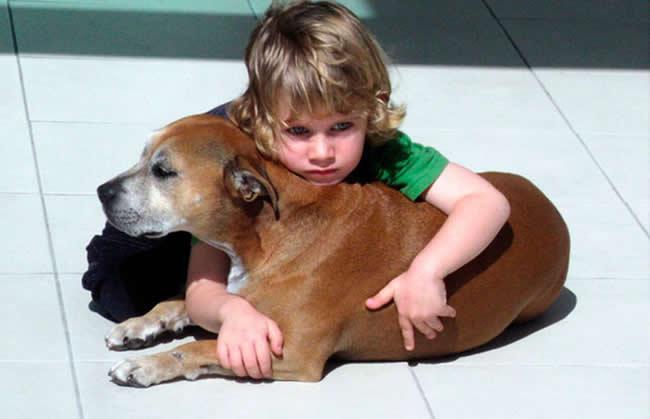Falaram para esse garoto que seu cão morreria em breve... sua ...