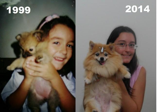 34 fotos 'antes e depois' dos leitores e seus animais de estimação ...
