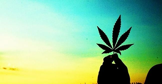O verdadeiro motivo porque drogas como maconha e cocaína são ...