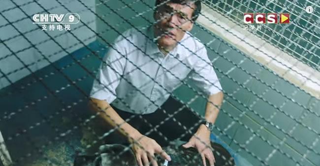Este chinês quer comprar cães abandonados no Brasil para fazer