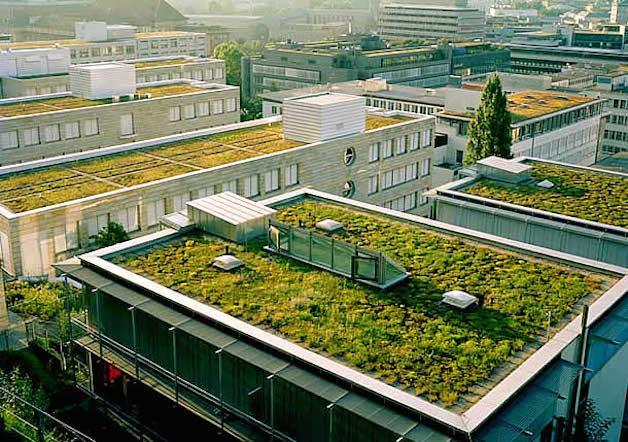 Virou lei na França: telhado verde e painel solar são obrigatórios ...