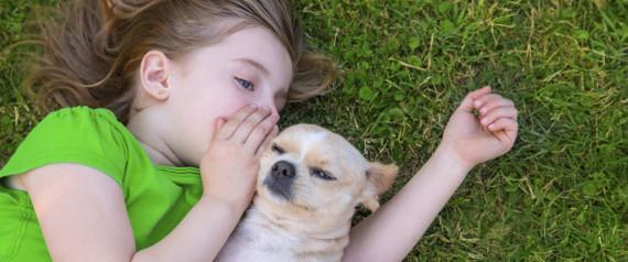 6 razões para você e seus filhos adotarem um animal de estimação ...