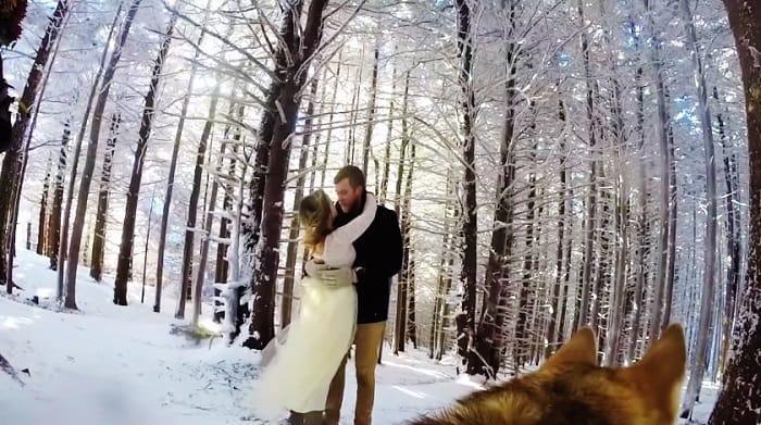 O casamento foi gravado pela cachorra do casal e ficou melhor do ...