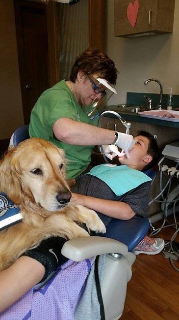 JoJo dentist dog 8