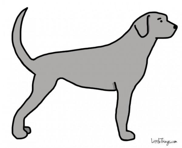 awebic-linguagem-dos-cães-2
