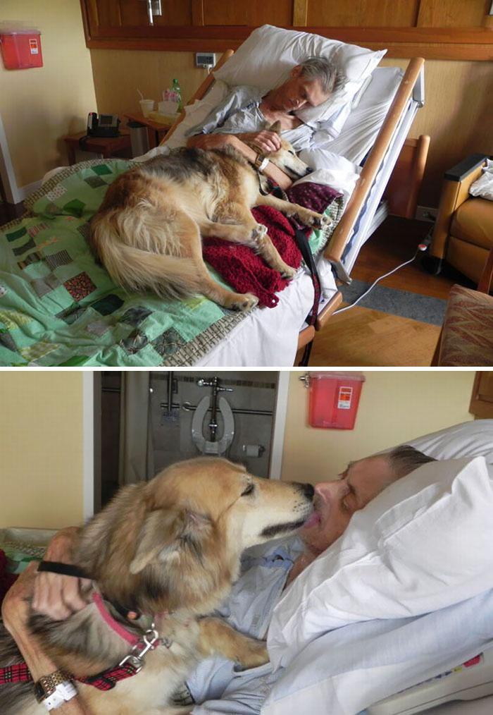 Sem-teto abraçado com seu cachorro na maca do hospital