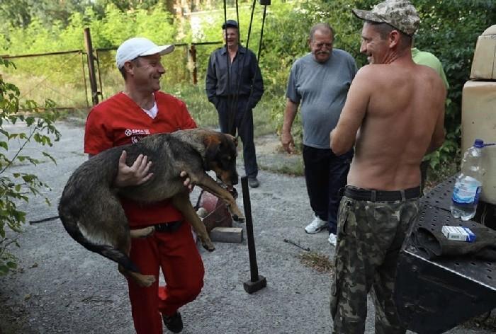 voluntários do Dogs os Chernobyl