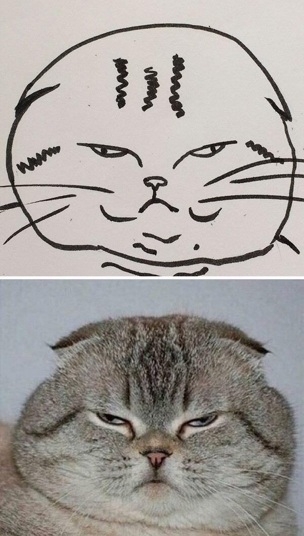 Desenhos de gatos (10)