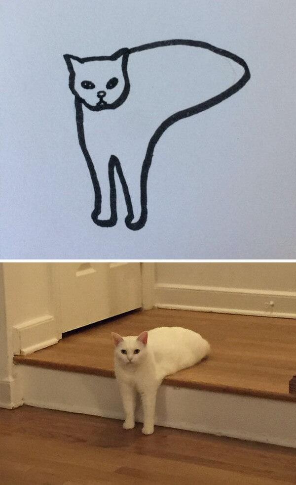 Desenhos de gatos (11)