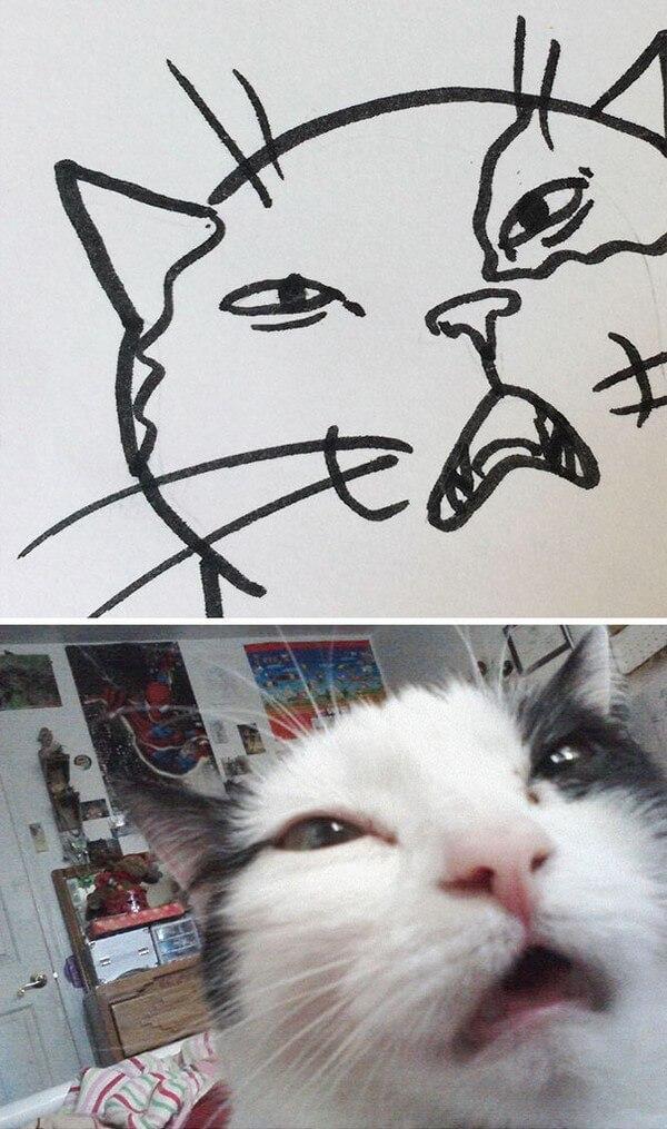 Desenhos de gatos (12)