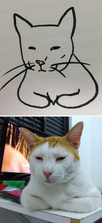 Desenhos de gatos (14)