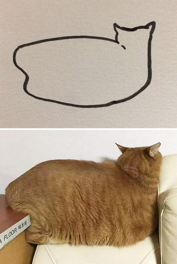 Desenhos de gatos (24)