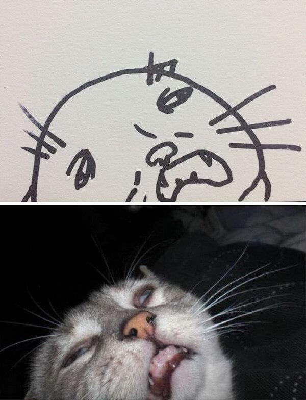 Desenhos de gatos (3)