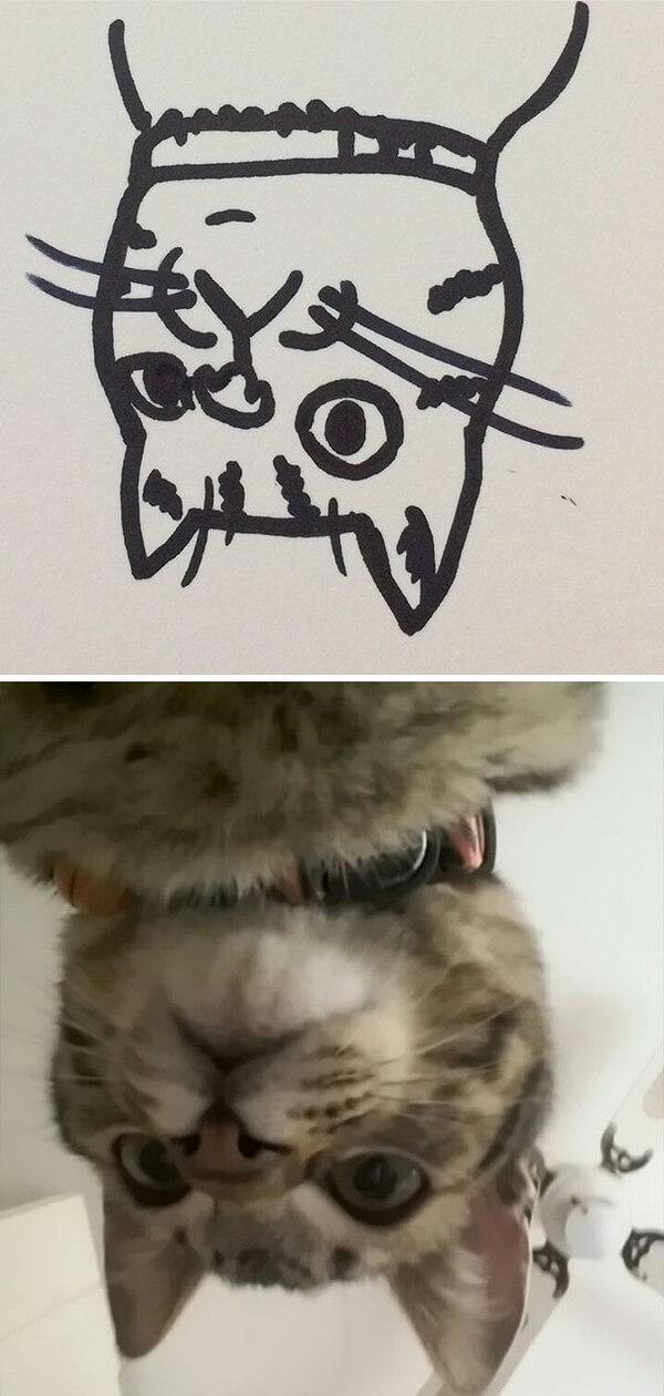 Desenhos de gatos (7)