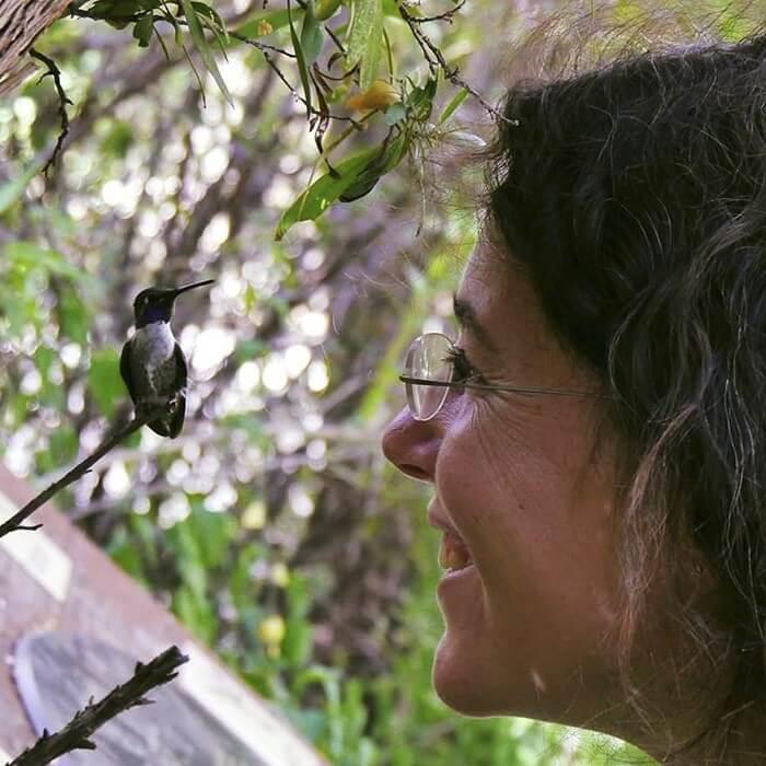 Mãe Beija-Flor (1)