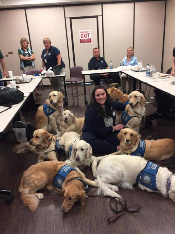 Cães ajudando vítimas do tiroteio em Las Vegas 2