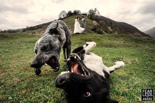 Melhores Fotografias Casamento 2017 (12)