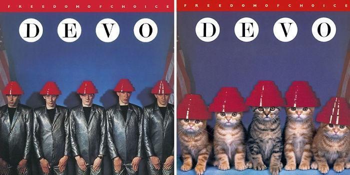 Artista substitui músicos por gatos (12)