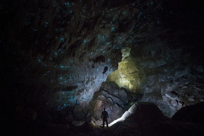 Cavernas mágicas da Nova Zelândia (14)