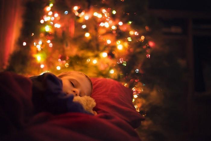 pai fotógrafo decoração de natal (8)