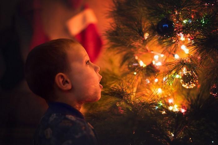 pai fotógrafo decoração de natal (6)