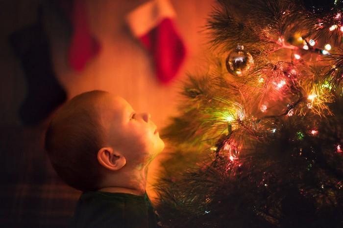 pai fotógrafo decoração de natal (5)