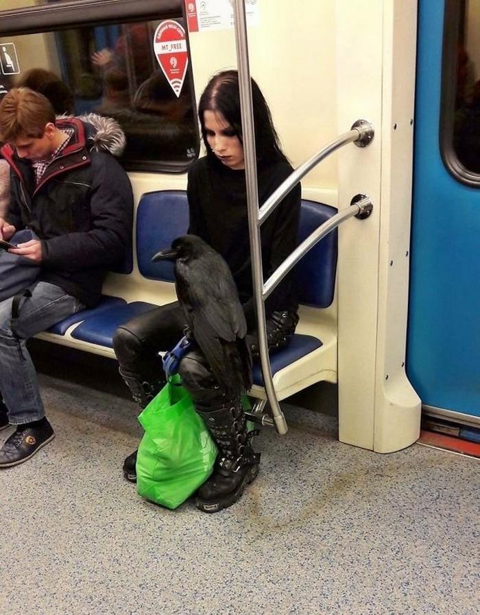 momentos engraçados no metrô (28)