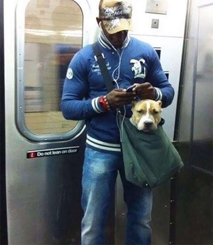 momentos engraçados no metrô (15)