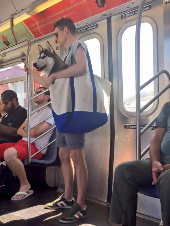momentos engraçados no metrô (8)