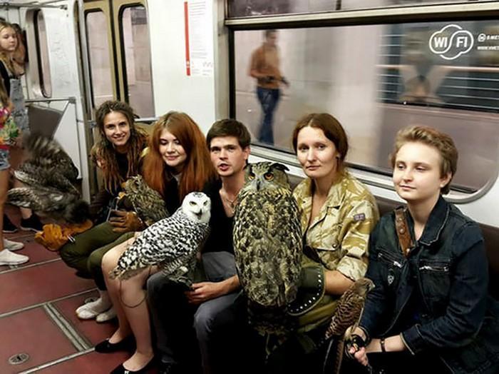 momentos engraçados no metrô (7)
