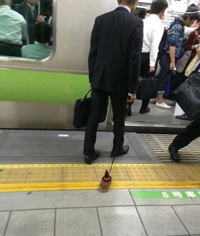 momentos engraçados no metrô (24)
