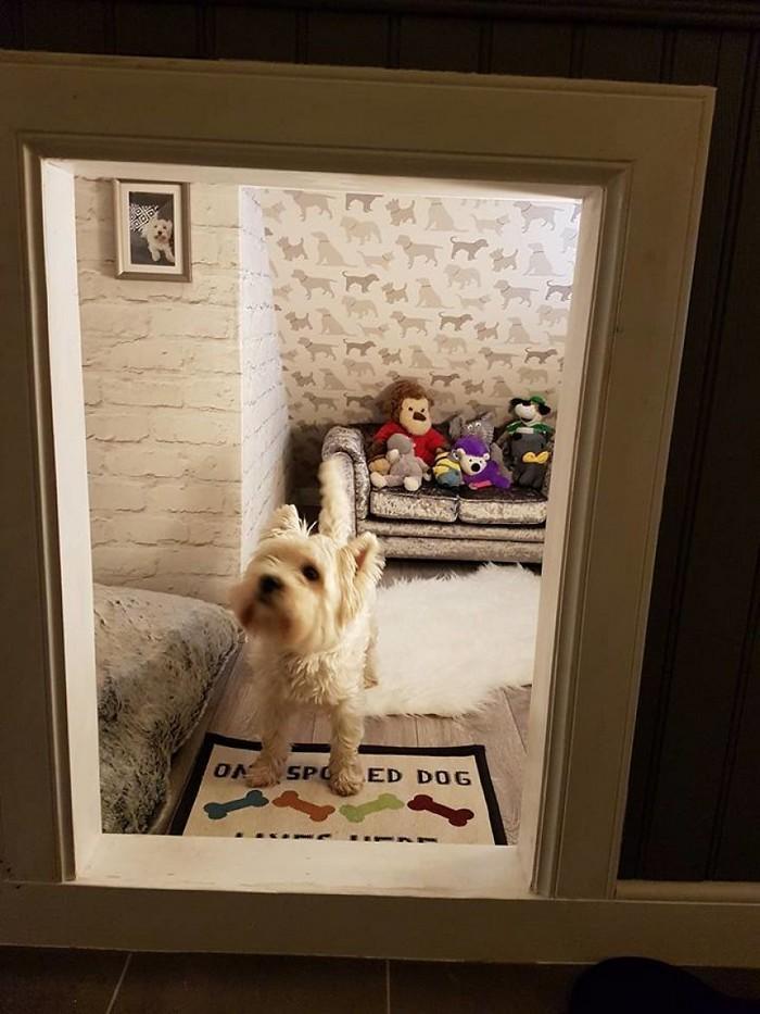 Casinha de cachorro construída embaixo das escadas (3)