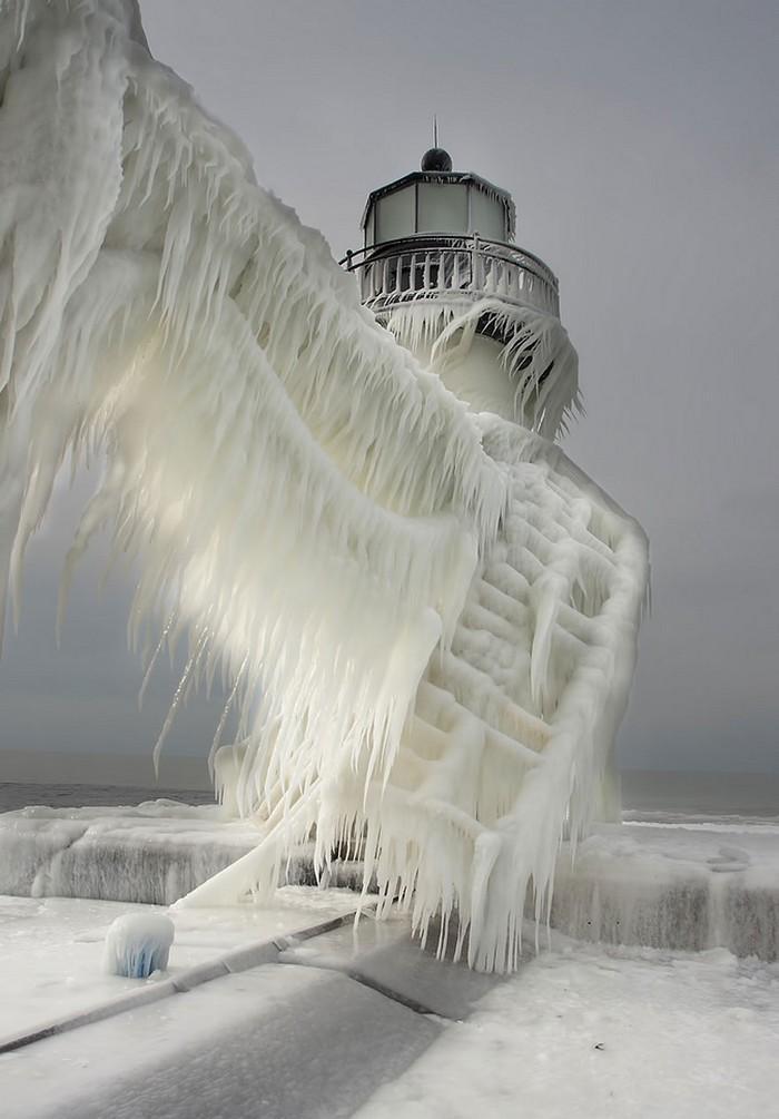 Detalhes congelados da natureza (29)