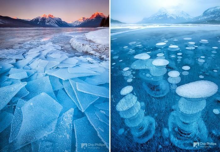 Detalhes congelados da natureza (26)