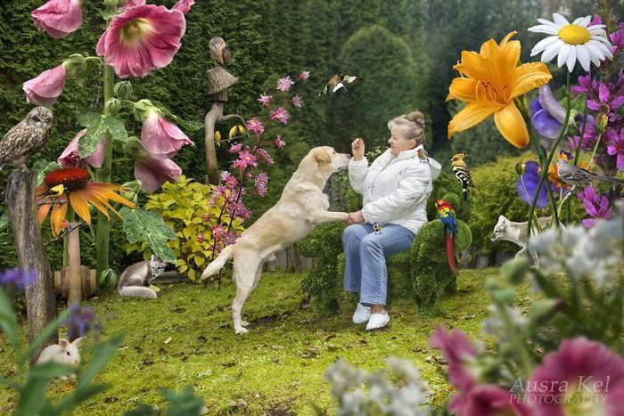 Fotógrafa tira cães de abrigo (3)