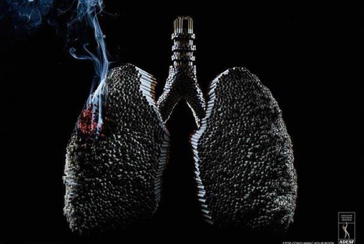 Campanha criativas contra o tabaco (7)