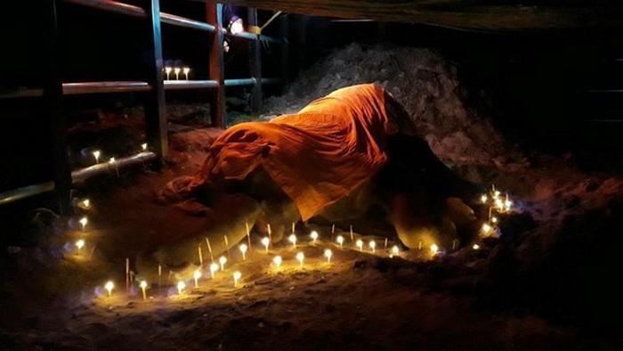 elefante de 60 anos morre na Tailãndia (2)
