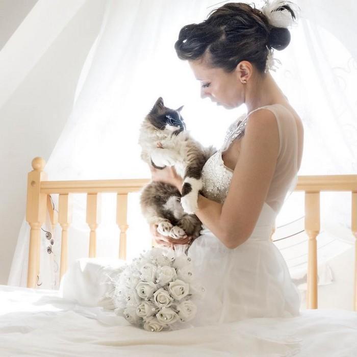 ensaio intimista pós-casamento de casal com seus gatos (15)