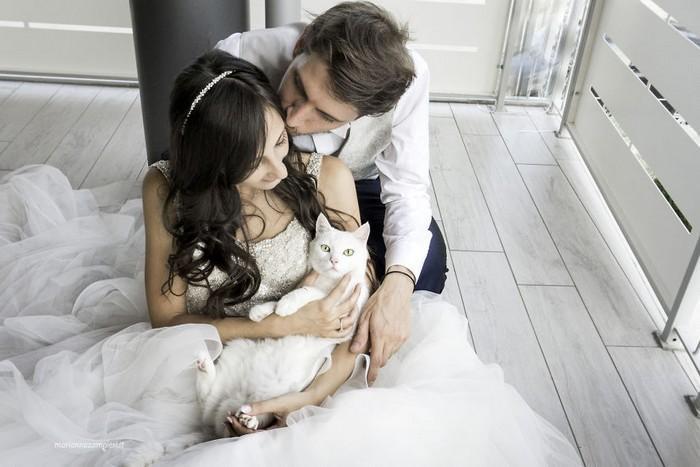 ensaio intimista pós-casamento de casal com seus gatos (3)