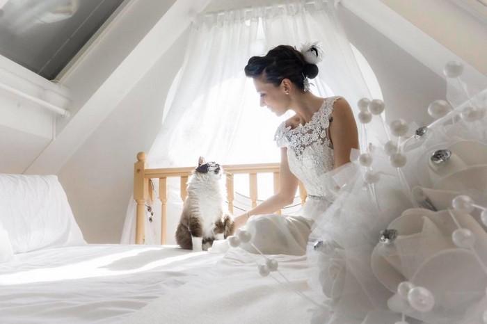 ensaio intimista pós-casamento de casal com seus gatos (13)