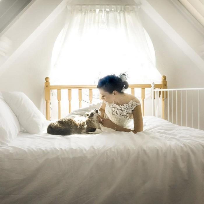ensaio intimista pós-casamento de casal com seus gatos (12)