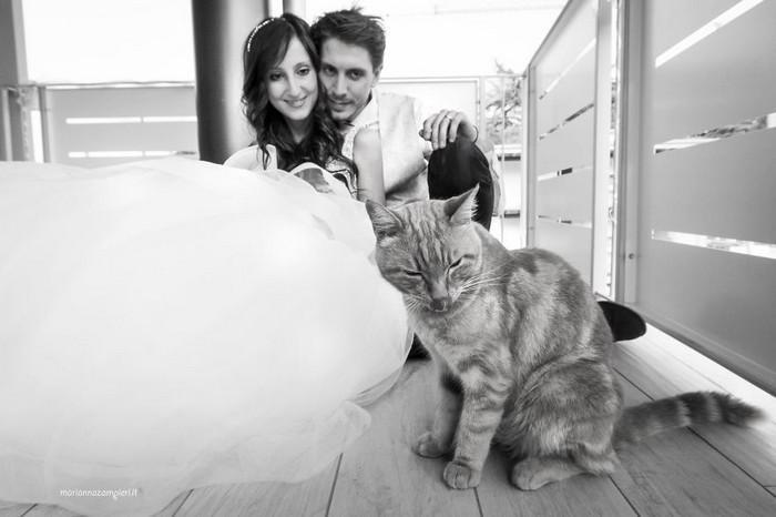 ensaio intimista pós-casamento de casal com seus gatos (10)