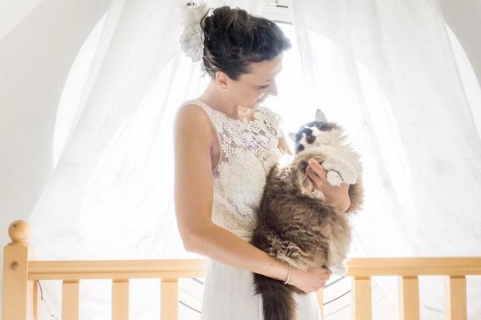 ensaio intimista pós-casamento de casal com seus gatos (9)
