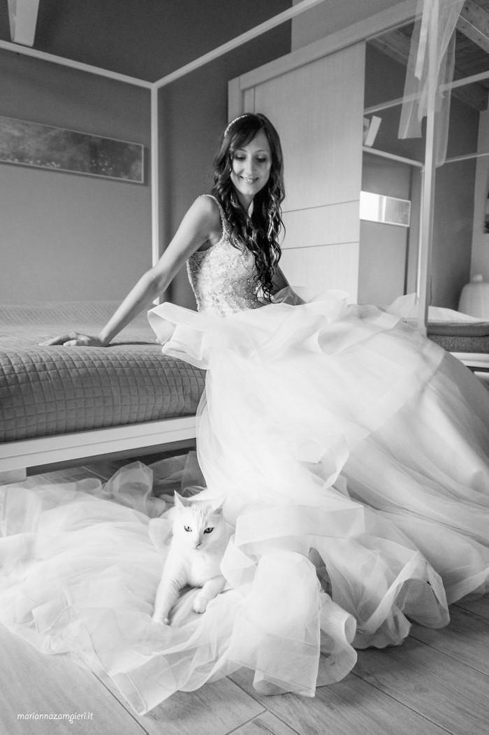 ensaio intimista pós-casamento de casal com seus gatos (8)