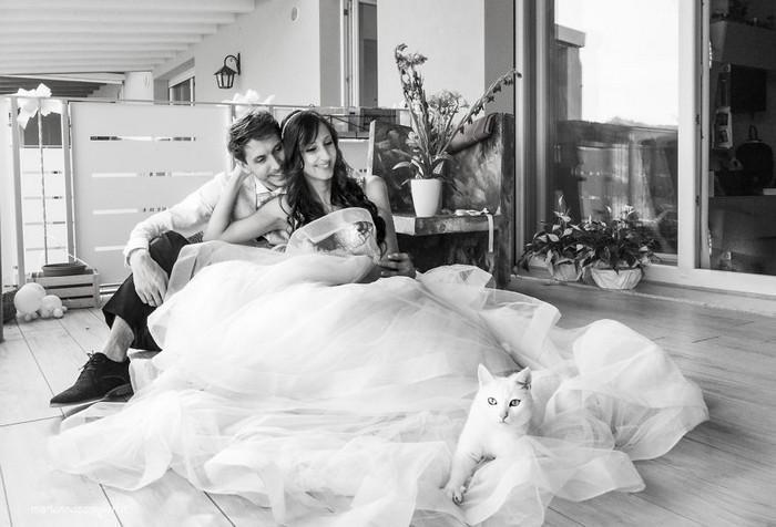 ensaio intimista pós-casamento de casal com seus gatos (7)
