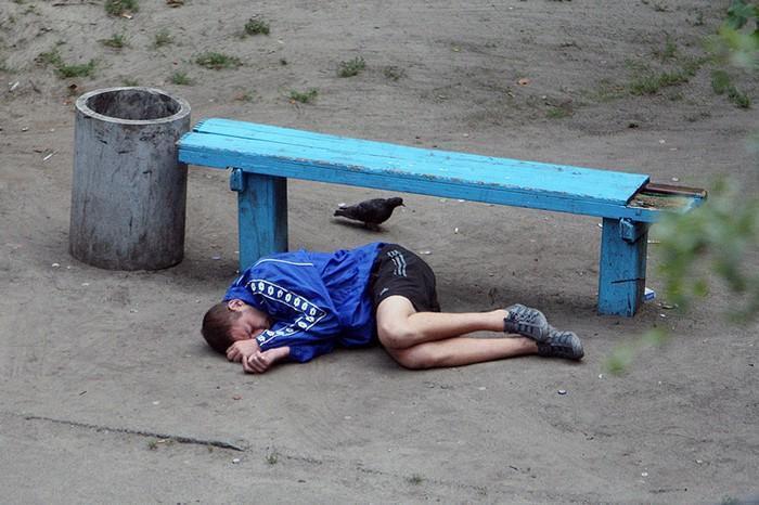 fotógrafo registra o mesmo banco de parque há dez anos (10)